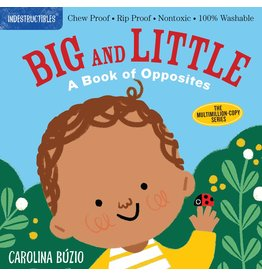 Indestructibles Baby Books Indestructibles: Big and Little