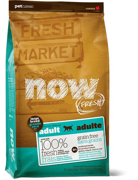 Now Fresh Large Breed Adult 25lb
