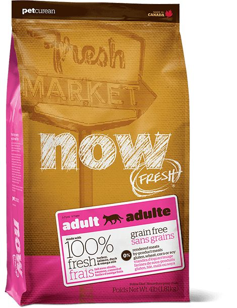 Now Cat Fresh Grain Free Adult 8lb