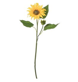 Sullivans SUNFLOWER STEM 20""