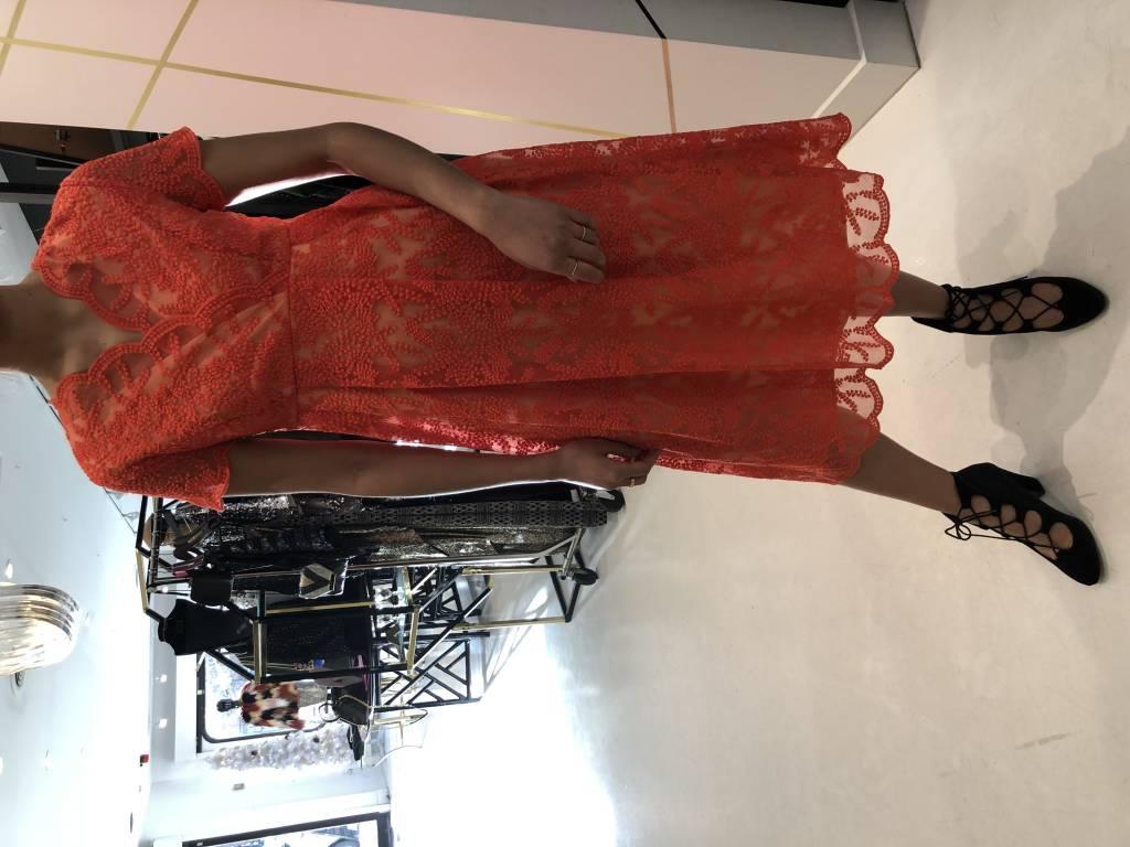 DARLING - Lace Dress