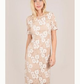 Molly Bracken Chelsea Lace Dress