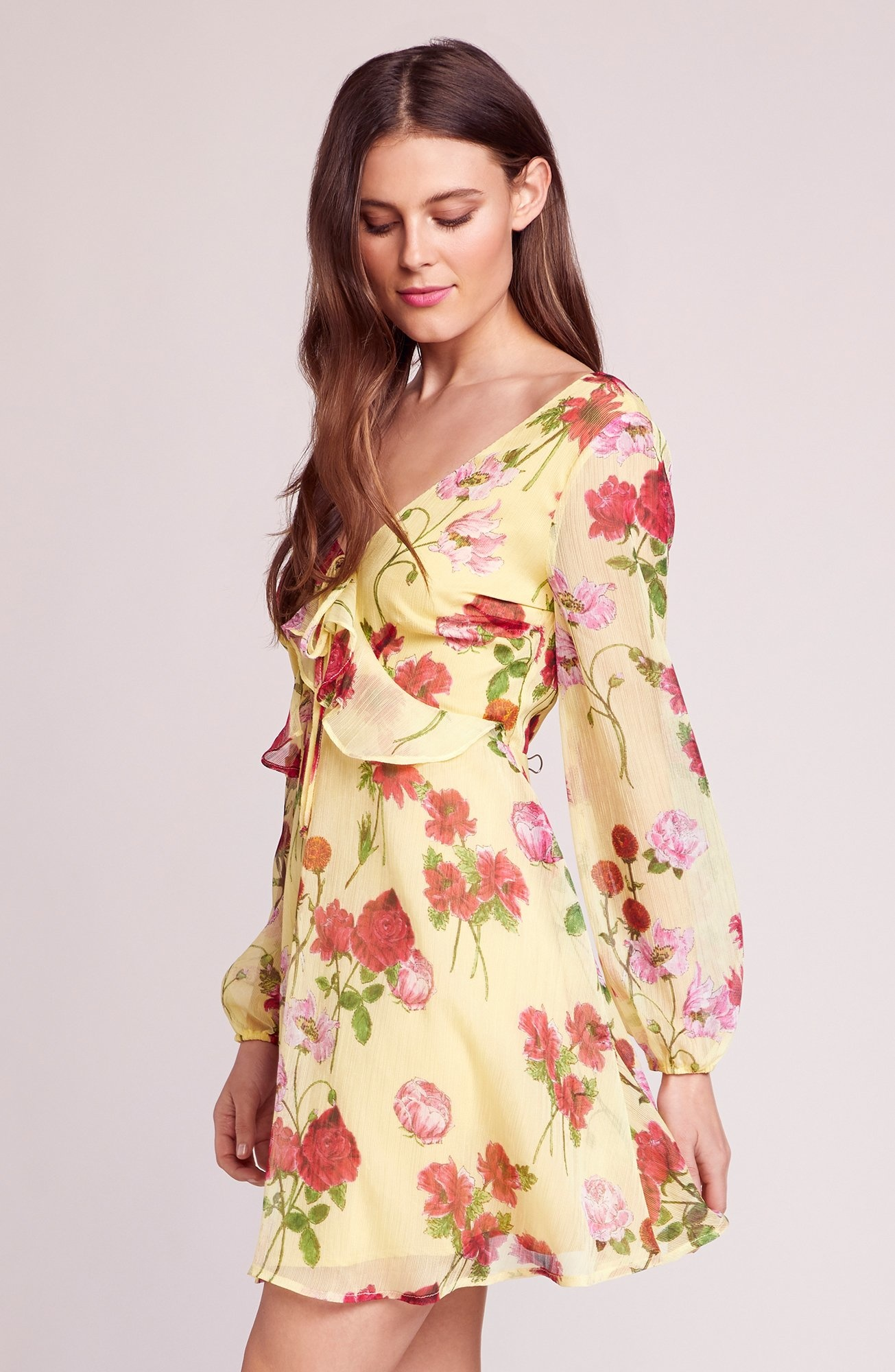 BB Dakota Botanical Bae Dress