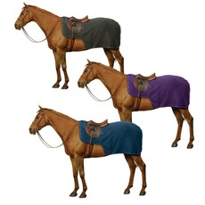 Centaur Exercise Sheet