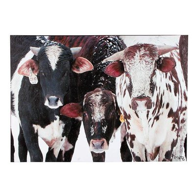 Cows of Many Colors Canvas