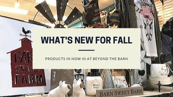 New products for Fall