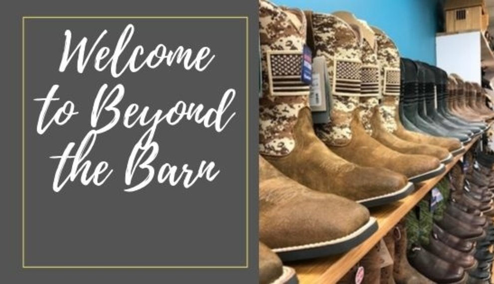 Welcome to Beyond the Barn!