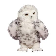 Douglas Shimmer Owl