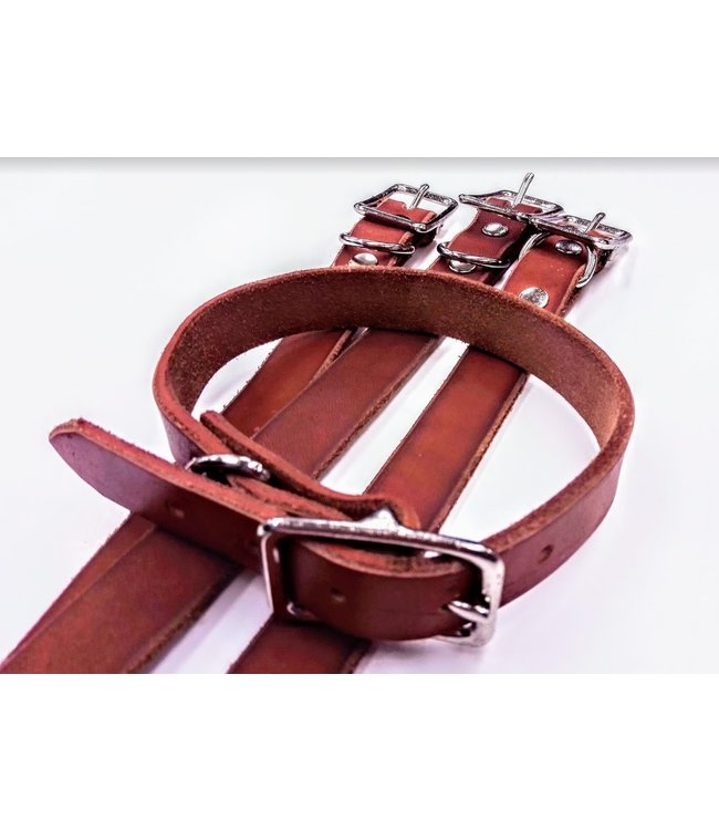 Beyond the Barn All Leather Dog Collar BTB