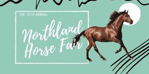 The Northland Horse Fair 2020