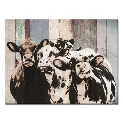 Farmhouse Cattle Canvas Wall Art 16x20