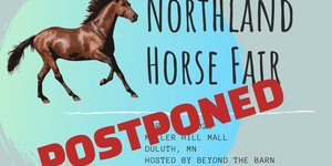 Northland Horse Fair Postponed