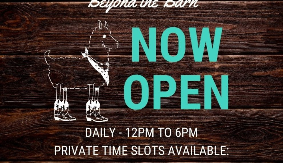 Beyond the Barn is open for business!
