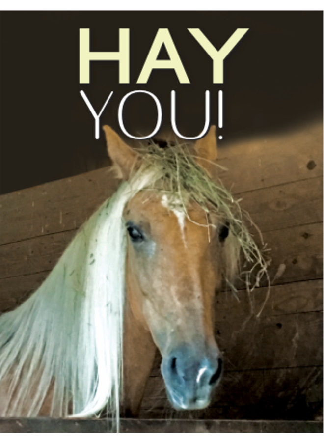 Horse Hollow Birthday Card Hay You!