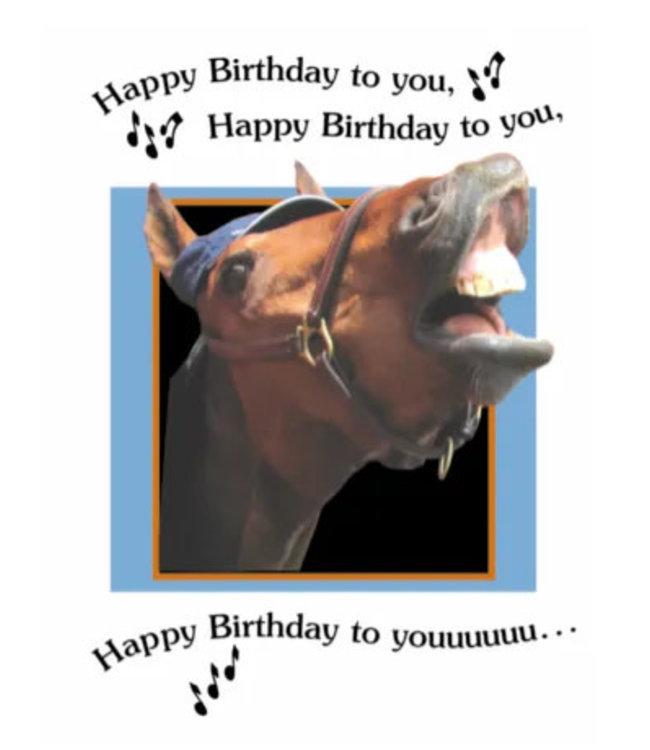 Horse Hollow Birthday Cards Happy Birthday Song