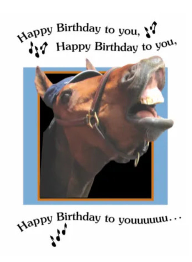 Horse Hollow Birthday Cards Happy Birthday Song