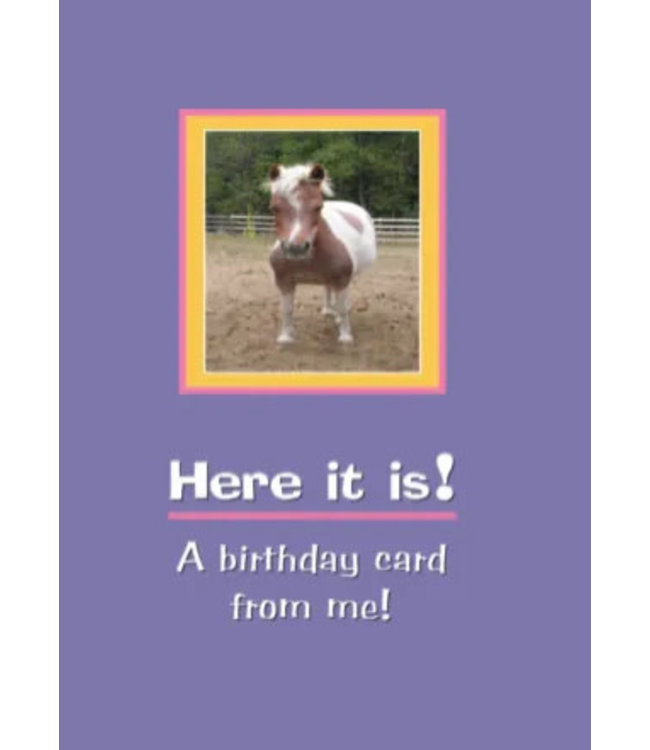 Horse Hollow Birthday Card Here It is