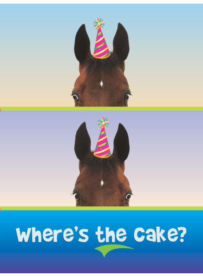 Horse Hollow Birthday Card Where's the Cake