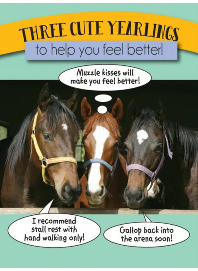 Horse Hollow Get Well Card Three Cute Yearlings