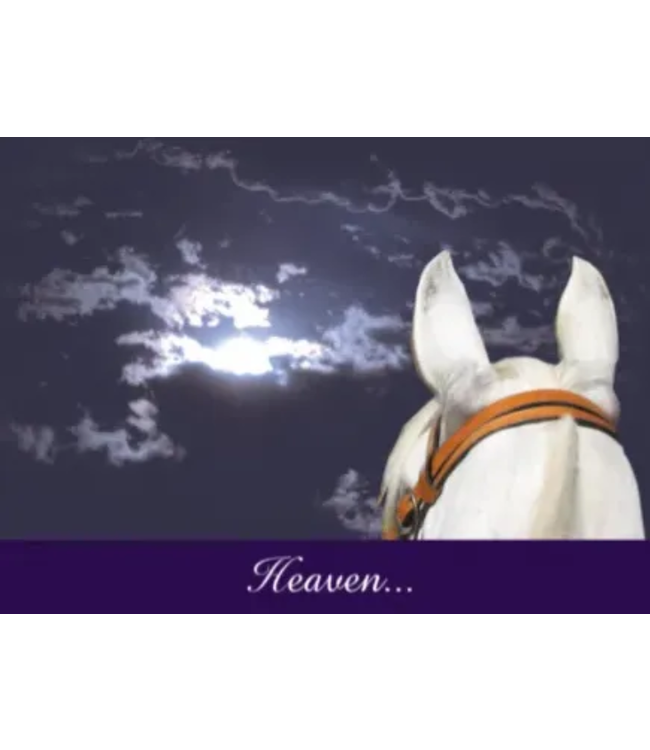 Horse Hollow Sympathy Card Heaven Got a Little Brighter