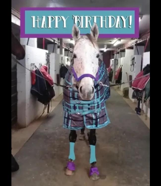 Horse Hollow Birthday Card Fabulous