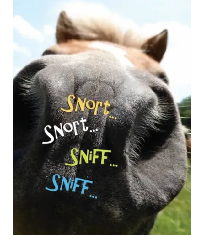 Horse Hollow Press Horse Hollow Birthday Card Snort