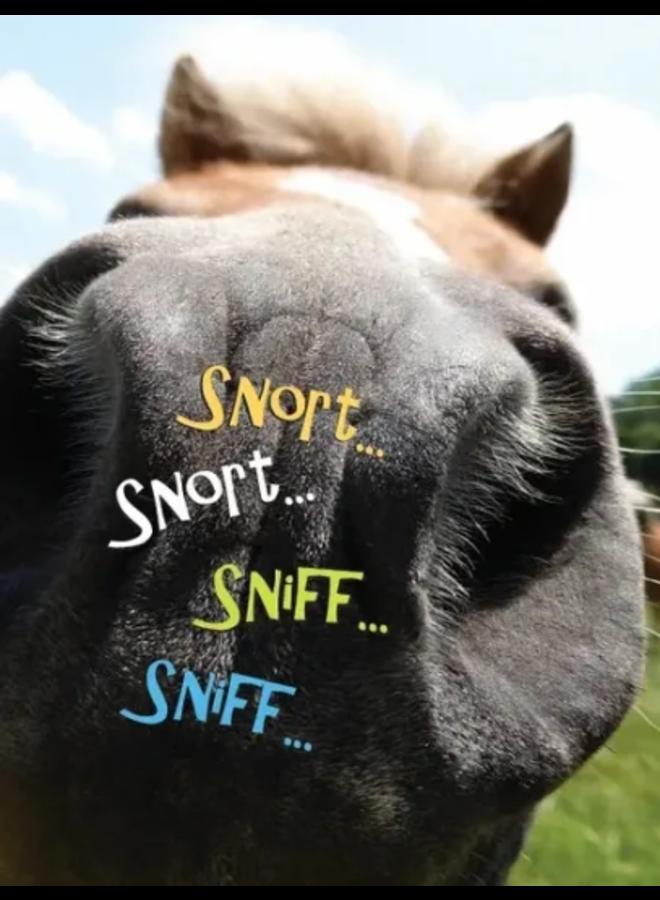 Horse Hollow Birthday Card Snort