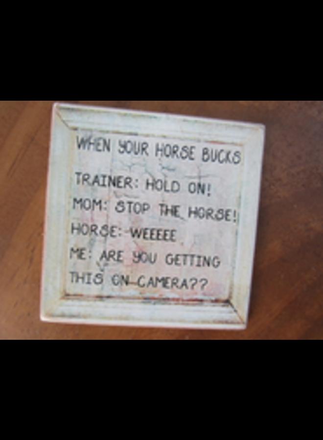 #2599 When your horse bucks