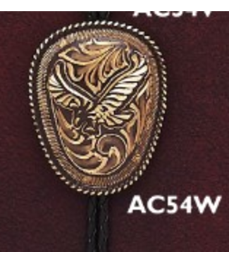 Bolo Engraved Eagle Brown AC54W
