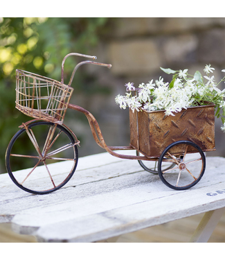 CTW Home Collection Delivery Trike Planter