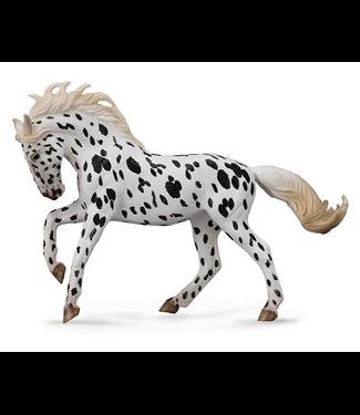 Breyer Collecta Black Leopard Knabstrupper Mare