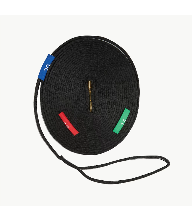Kincade Two Tone Lunge Line with Circle Markers 36'