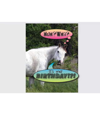 Horse Hollow Press Birthday Card: Excuse me...Huh wha? It's your birthday!