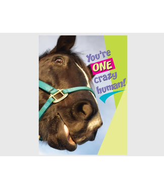 Horse Hollow Press Birthday Card: You're one CRAZY HUMAN!