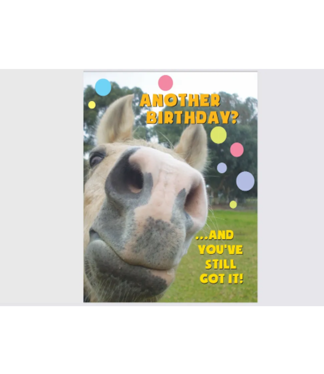 Horse Hollow Press Birthday Card: Another birthday and you still got it