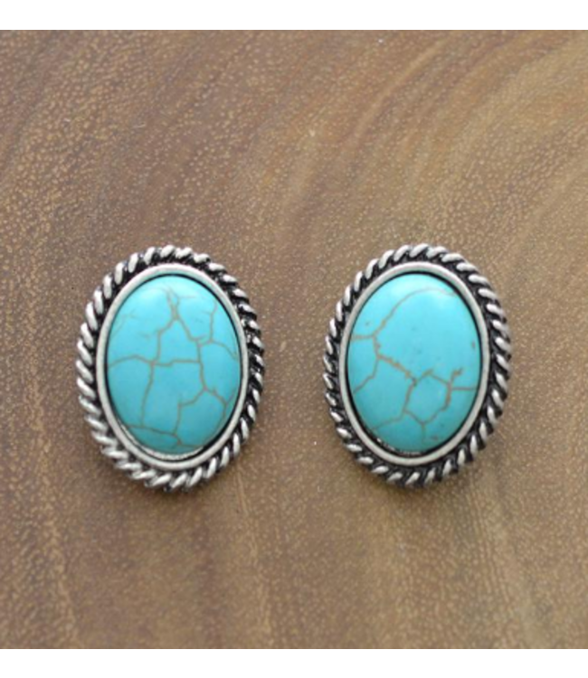 Turquoise Oval Clip Earings