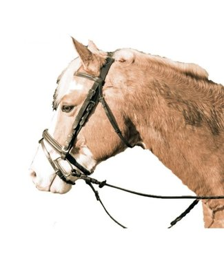 Legacy Plain Padded Bridle with Flash