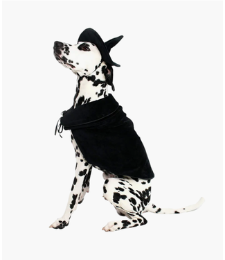 Midlee Designs Halloween Witch Cape and Hat Dog Costume