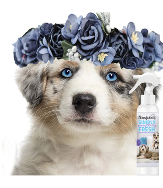 The Blissful Dog Simply Everything Fresh Deodorizing Pet Spray 8oz