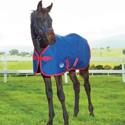Weatherbeeta Weatherbeeta 1200D Foal Rug