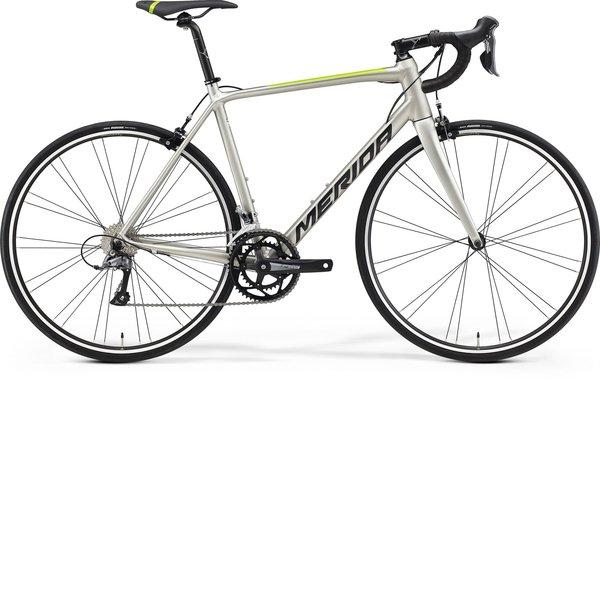 Merida SCULTURA RIM 100 (2021) Silk Titan (Black/Green)