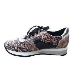 CoFi Holly Sneaker - Snake