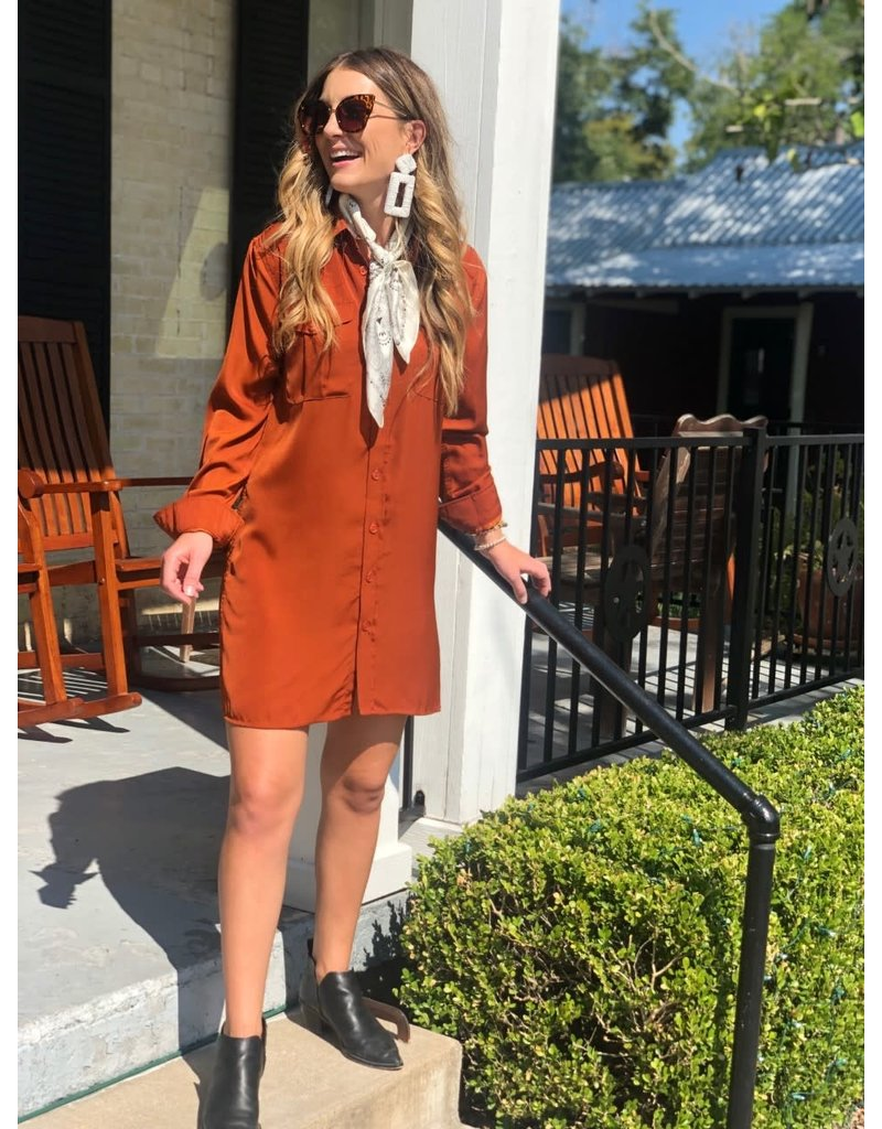 Button Down Dress in Rust
