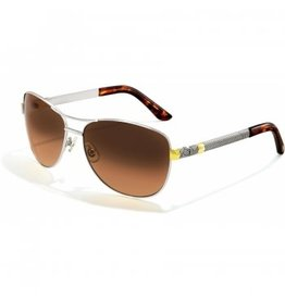 Brighton Acoma Sunglasses