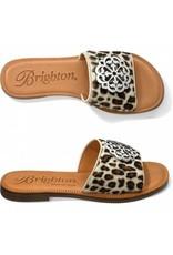 Brighton Eva Winter Leopard