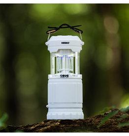 Z Bug Lantern + Light