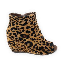 Naughty Monkey Kuda Leopard