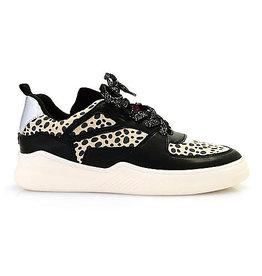 Matisse Behave Leopard Sneakers