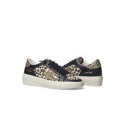 Vintage Havana Maiden Leopard Gold Star Sneakers