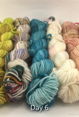 Lichen and Lace Lichen and Lace Mini Sock Fade Set